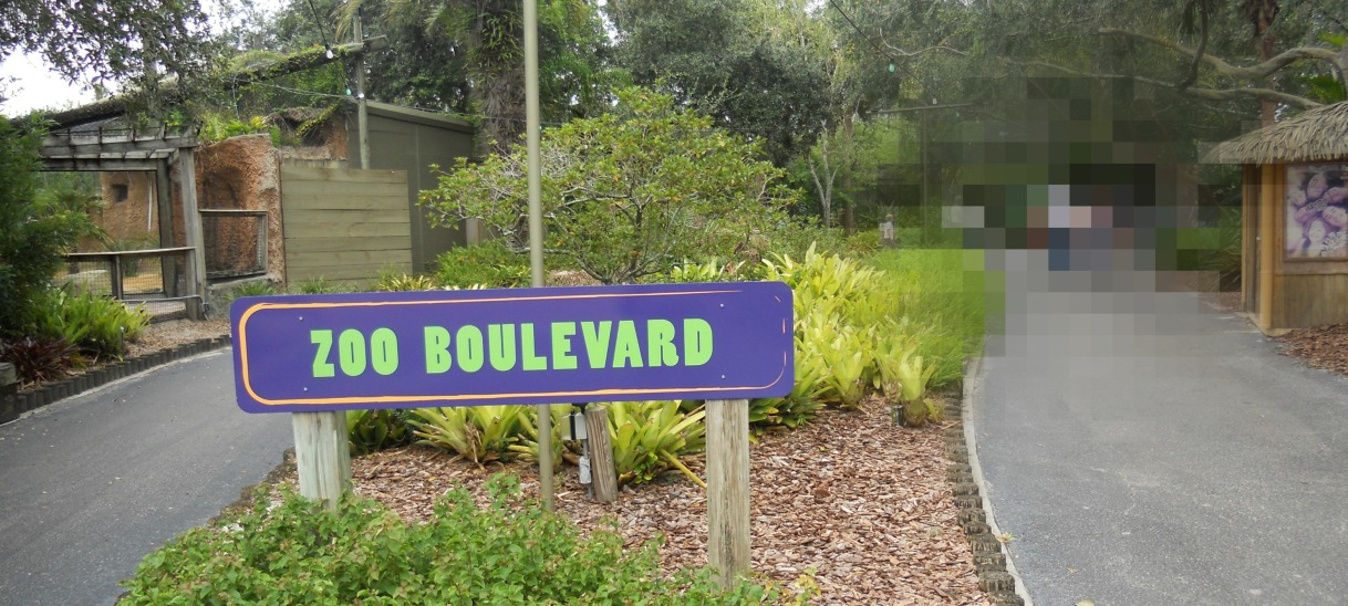 Transit Staycations – Tampa's Lowry Park Zoo