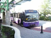 On another sunny day, #2505 is assigned to the Route 6 Local towards USF. There is also a Limited Stop variant of Route 6 that runs on weekdays. This service was started in July of 2011. Photo Credit: Shawn B.