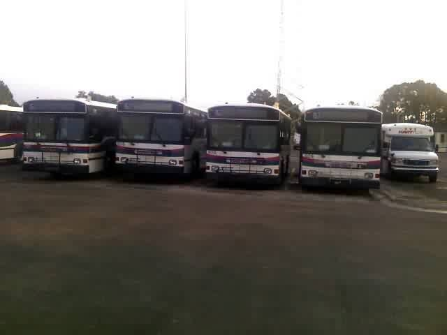 Several 1996-series 30-foot Phantoms in a row atthe garage. These buses were retired in 2007 and 2008 based on their condition. Photo Credit: Shawn B.