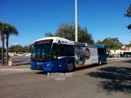 #2508 leaving Britton Plaza on Route 19.