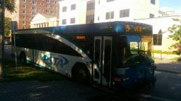 #2617 on Route 79 at Williams Park. Photo Credit: HARTride 2012.
