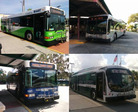 Bus Fuels 1