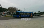 #2620 springs up at the Pinellas Park Transit Center.