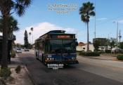 #721 on the Suncoast Beach Trolley.
