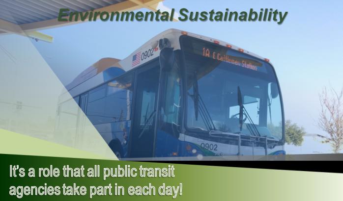 Environmental Sustainability 1