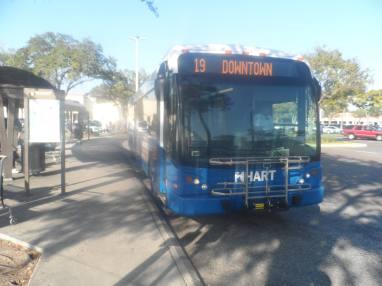 #2504 on Route 19, Britton Plaza. Photo Credit: Joseph C.